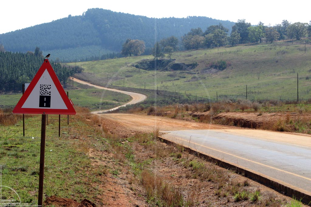 Yellow Elephant South Africa | Drive-by Snapshots by Sebastian Motsch (2007)