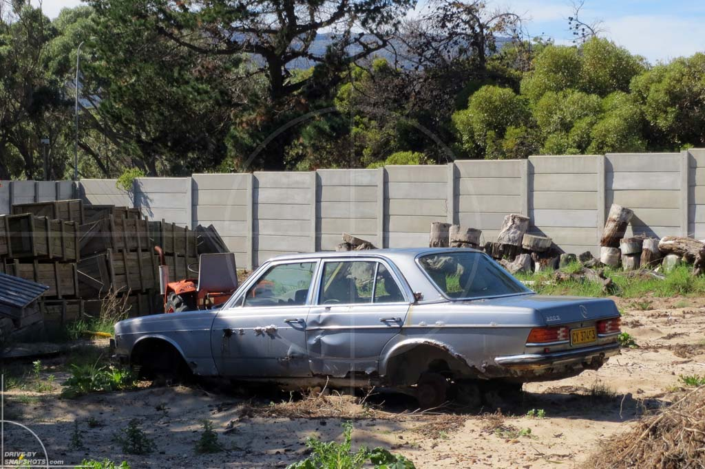 Parked under a tree in Mercedes-Benz W123   Drive-by Snapshots by Sebastian Motsch (2012)