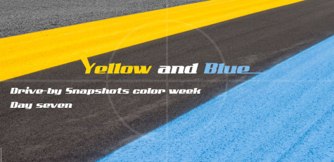 DBS Color Week Yellow and Blue Day 7