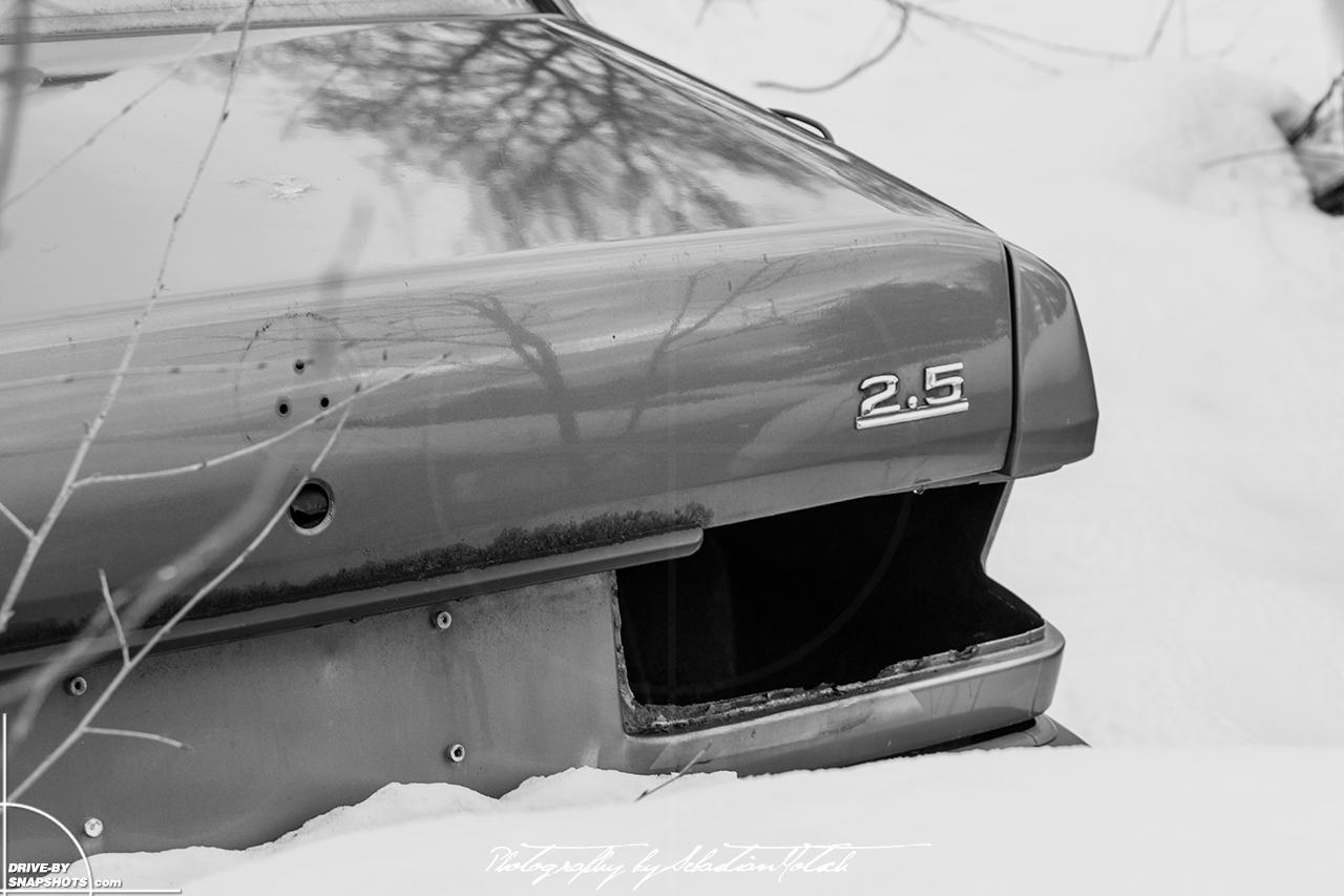 Mercedes-Benz W201 Silvester Blues 01 | Drive-by Snapshots by Sebastian Motsch (2017)